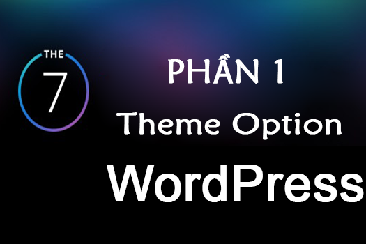 huong-dan-tuy-chinh-theme-option-cua-theme-the7-phan-1